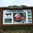 町田バネット牧場